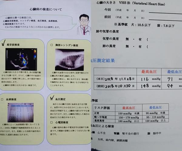 page1_20181129094332db6.jpg