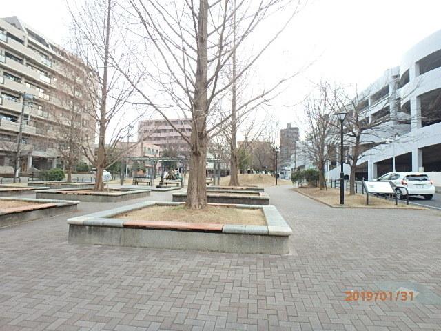 P1310003.jpg