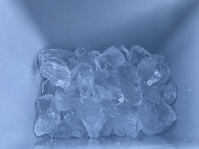 塩水(海水)で鮮度を保つ方法