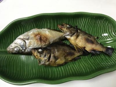 ウミタナゴとメバルの姿焼き