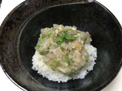 ベラのタタキ丼(ササノハベラの卵入り)