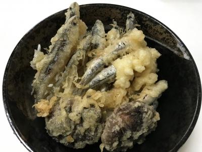 カタクチイワシの塩天丼