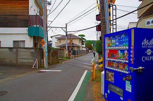 IMGP7856_.jpg