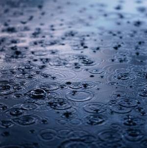 雨水2019