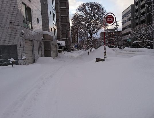20190111積雪の状況