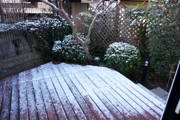 うっすら雪201900069520