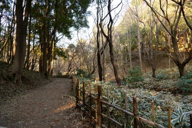 四季の森公園00069834
