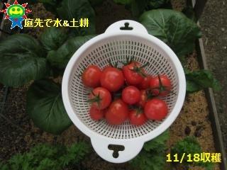 IMG_0693_convert_20181119072846.jpg