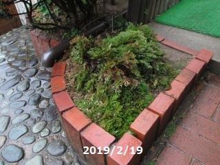 IMG_0882_convert_20190219115842.jpg