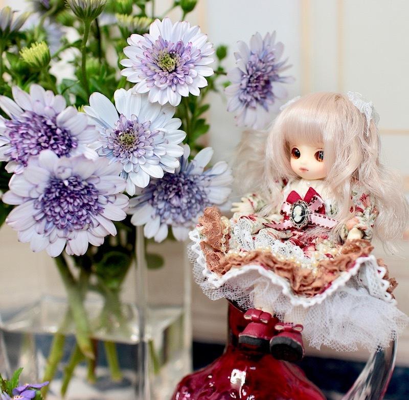Brownie-nene0141.jpg
