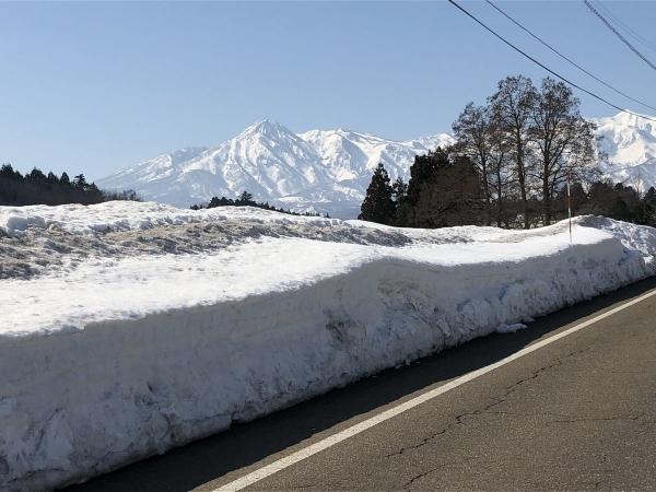 2019-02-24 雪の壁