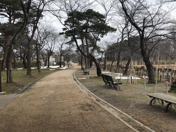 2019-02-25 高田公園