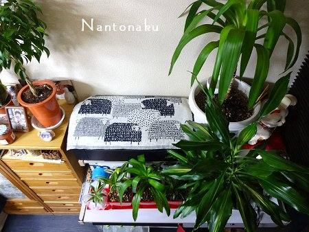 NANTONAKU 部屋 窓側は実はカラフル 2