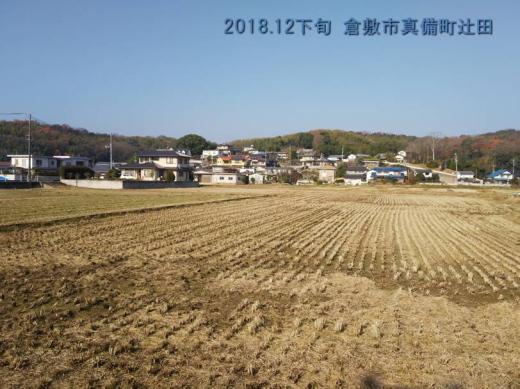 kurashikicitymabichotsujita1812-1.jpg