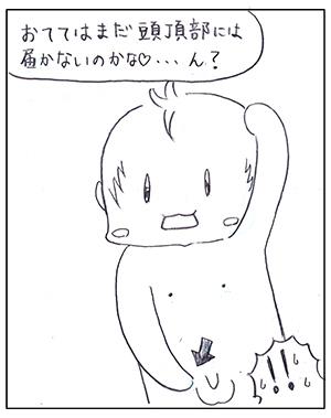 h310204_001.jpg