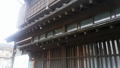 0208yukimau.jpg