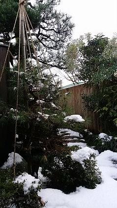 1231misokayukigeshiki.jpg
