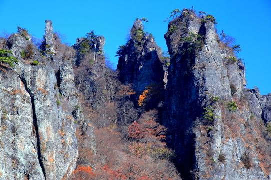 妙義山の針峰群を彩る黄葉