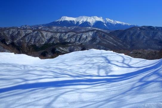 雪原の樹影と霊峰御岳山