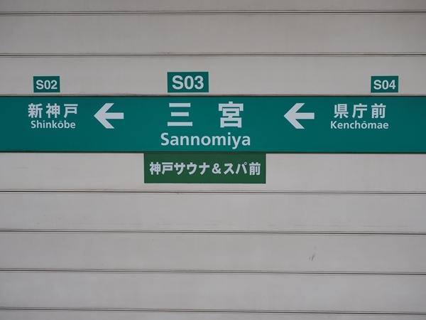 P6304580_R.jpg