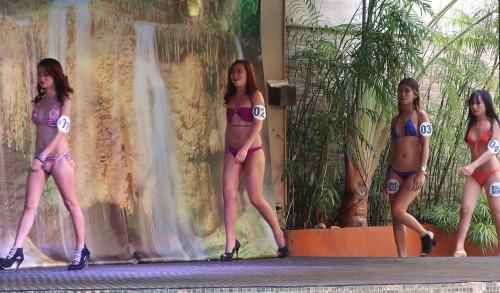 Miss Jim beam swimsuit1101718 (31)