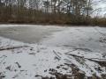 狸と雉の足跡のある池