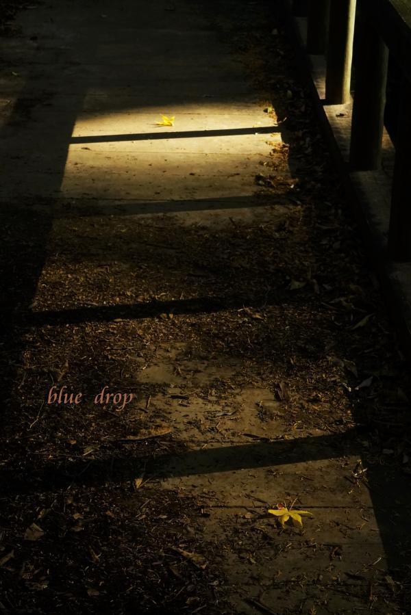 面影色の橋