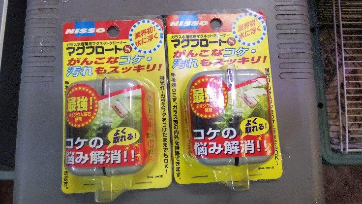 moblog_30ecb2a3.jpg