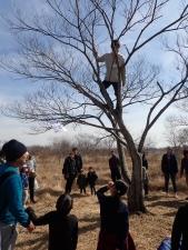 木登り_安全な登り方説明