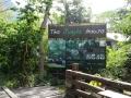 The Jungle House
