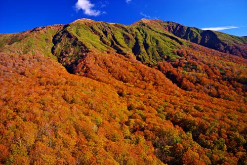 秋田駒ヶ岳の紅葉