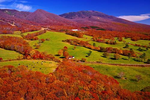 紅葉の岩手山と網張温泉