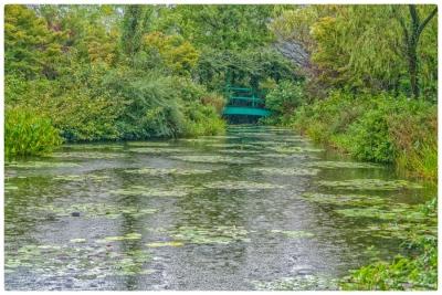 モネの庭、雨の日 1