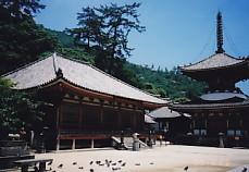 淨土寺本堂と多寶塔
