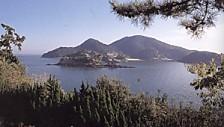 鞆の浦仙酔島