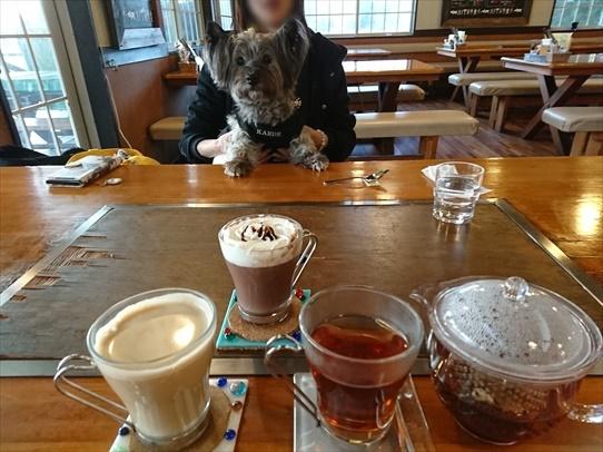 cafe1_20190114183625eab.jpg