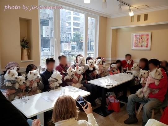 cafe3_201812201535026bd.jpg