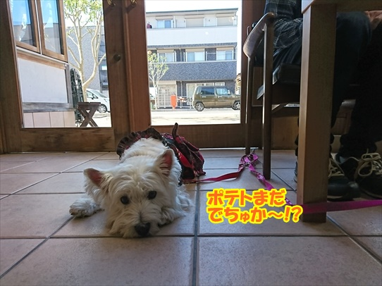 cafe7_2018121019380431b.jpg