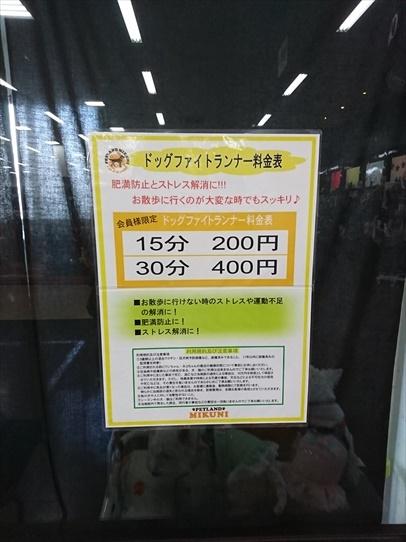 mikuni3_20181101152610907.jpg