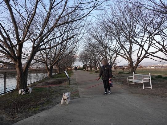 park15_2019012418421852b.jpg