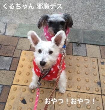fc2blog_201901250751430f2.jpg