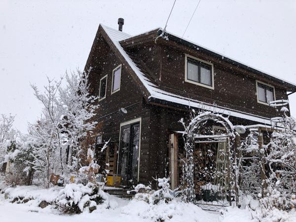 雪降ったよ