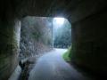 190302名阪国道をくぐって桜峠への上り