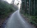190302桜峠ピークへ最後の激区間