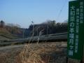 190302尾根道沿いの茶畑