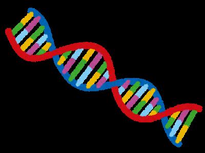 DNA(いらすとや)