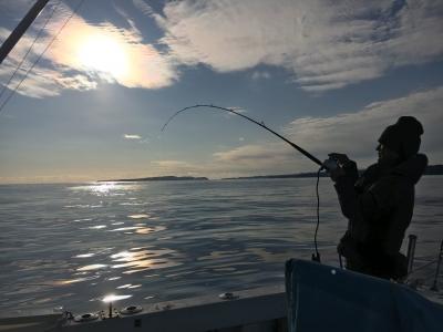 晴天微風で絶好の釣り日和になった和歌山県太地沖