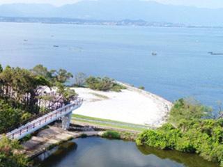 琵琶湖博物館で11月3日からオープンする樹冠トレイルの一部