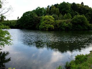 甲賀市水口町春日の養津喰池