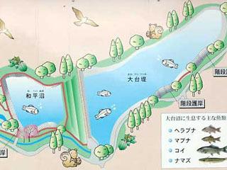 大台沼自然公園